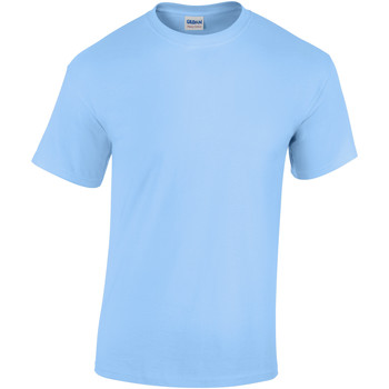 Textil Criança T-Shirt mangas curtas Gildan 5000B Azul claro