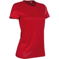 Textil Mulher T-Shirt mangas curtas Stedman  Vermelho carmesim