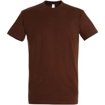 Textil Homem T-Shirt mangas curtas Sols 11500 Terra