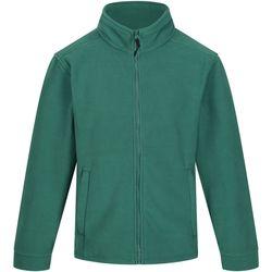 Textil Homem Casaco polar Regatta Fleece Garrafa Verde