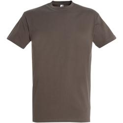 Textil Homem T-Shirt mangas curtas Sols 11500 Zinco