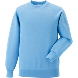 Textil Criança Sweats Jerzees Schoolgear 7620B Azul Céu