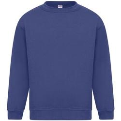 Textil Homem Sweats Absolute Apparel Sterling Real