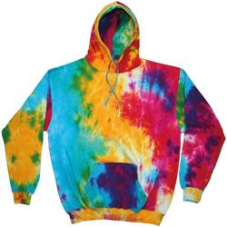 Textil Homem Sweats Colortone TD31M Arco-íris múltiplo