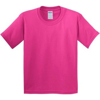 Textil Criança T-Shirt mangas curtas Gildan 5000B Helicônia