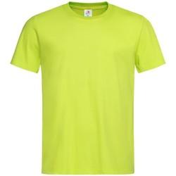 Textil Homem T-Shirt mangas curtas Stedman  Cal viva