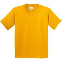 Textil Criança T-Shirt mangas curtas Gildan 5000B Ouro