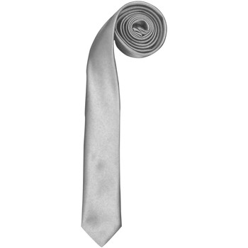 Textil Homem Gravatas e acessórios Premier  Prata