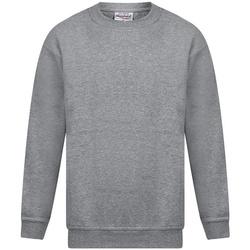 Textil Homem Sweats Absolute Apparel Magnum Sport Grey