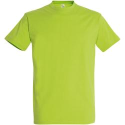 Textil Homem T-Shirt mangas curtas Sols 11500 Verde maçã