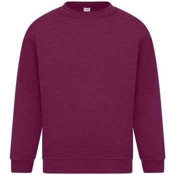 Textil Homem Sweats Absolute Apparel Sterling Borgonha