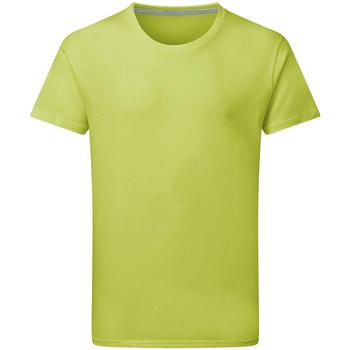 Textil Homem T-Shirt mangas curtas Sg Perfect Tília
