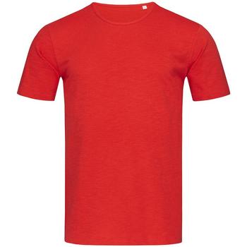 Textil Homem T-Shirt mangas curtas Stedman Stars Shawn Vermelho carmesim