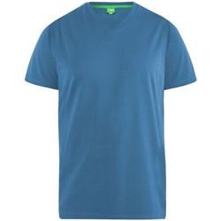 Textil Homem T-Shirt mangas curtas Duke  Teal