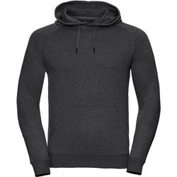 Textil Homem Sweats Russell R281M Grey Marl