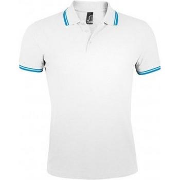 Textil Homem Polos mangas curta Sols Pasadena Branco/Aqua Azul