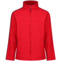 Textil Homem Casacos  Regatta  Vermelho clássico