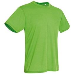 Textil Homem T-Shirt mangas curtas Stedman  Kiwi Green