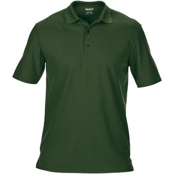 Textil Homem Polos mangas curta Gildan GD046 Verde Floresta