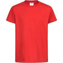 Textil Criança T-Shirt mangas curtas Stedman  Vermelho Escarlate