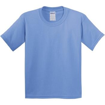 Textil Criança T-Shirt mangas curtas Gildan 5000B Carolina Blue