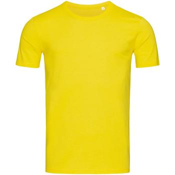 Textil Homem T-Shirt mangas curtas Stedman Stars Morgan Margarida Amarela