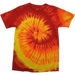 Textil Mulher T-Shirt mangas curtas Colortone Rainbow Blaze