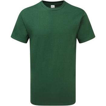 Textil Homem T-Shirt mangas curtas Gildan H000 Esporte Verde Escuro