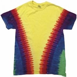 Textil Criança T-Shirt mangas curtas Colortone TD05B Arco-íris Vee