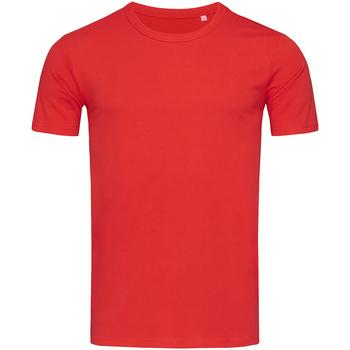 Textil Homem T-Shirt mangas curtas Stedman Stars Morgan Vermelho carmesim