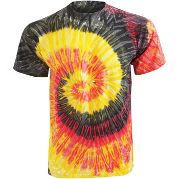 Textil Mulher T-Shirt mangas curtas Colortone Rainbow Kingston