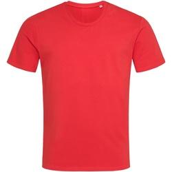 Textil Homem T-Shirt mangas curtas Stedman  Vermelho Escarlate