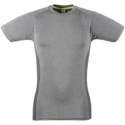 Textil Homem T-Shirt mangas curtas Tombo Teamsport TL515 Grey Marl / Grey