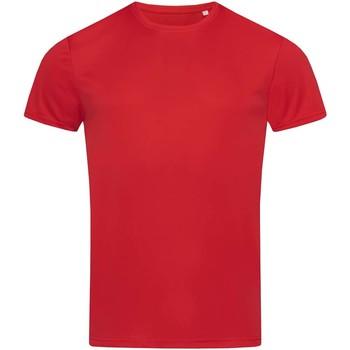 Textil Homem T-Shirt mangas curtas Stedman  Vermelho carmesim