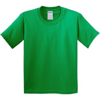 Textil Criança T-Shirt mangas curtas Gildan 64000B Verde Irlandês