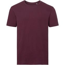 Textil Homem T-Shirt mangas curtas Russell R108M Borgonha