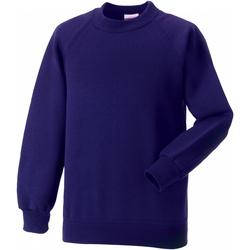 Textil Criança Sweats Jerzees Schoolgear 7620B Púrpura