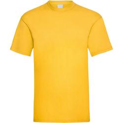 Textil Homem T-Shirt mangas curtas Universal Textiles 61036 Ouro