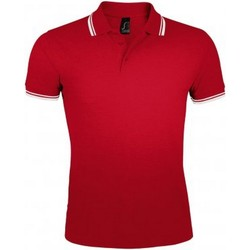 Textil Homem Polos mangas curta Sols Pasadena Vermelho/branco