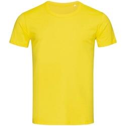 Textil Homem T-Shirt mangas curtas Stedman Stars Stars Margarida Amarela