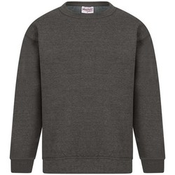 Textil Homem Sweats Absolute Apparel Sterling Carvão vegetal