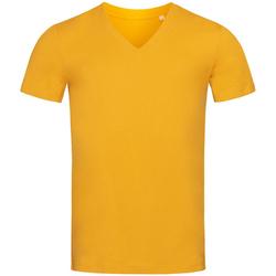 Textil Homem T-Shirt mangas curtas Stedman Stars  Amarelo indiano