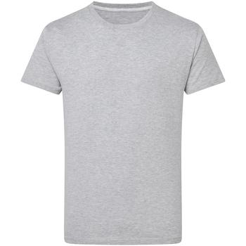 Textil Homem T-Shirt mangas curtas Sg Perfect Oxford leve