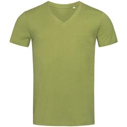 Textil Homem T-Shirt mangas curtas Stedman Stars  Verde Terra