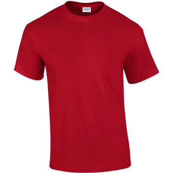 Textil Homem T-Shirt mangas curtas Gildan Ultra Cherry Red