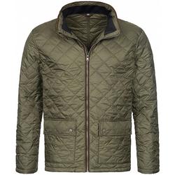 Textil Homem Jaquetas Stedman  Verde Militar