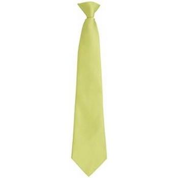 Textil Homem Gravatas e acessórios Premier PR785 Tília