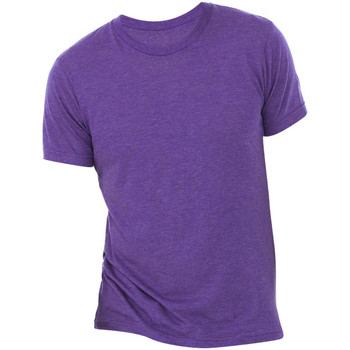 Textil Homem T-Shirt mangas curtas Bella + Canvas CA3413 Triblend púrpura