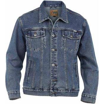Textil Homem casacos de ganga Duke  Stonewash