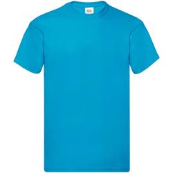 Textil Homem T-Shirt mangas curtas Fruit Of The Loom SS12 Azul-azul
